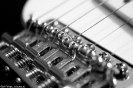 Fender Stratocaster ganz nah