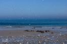am Strand der Dühne