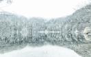 Feldsee winterlich